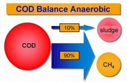 Figure. Comparison of the COD balance during anaerobic and aerobic treatment of wastewater containing organic pollution